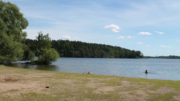 Norrviken Trollholmen badplats