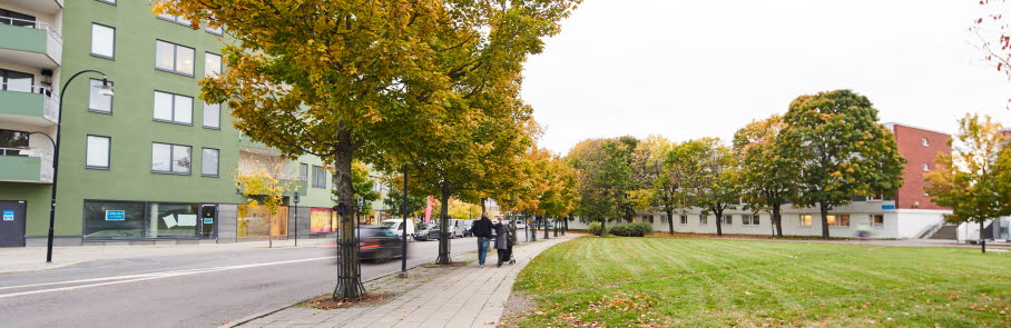 Bild från malmvägen